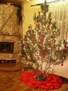kiefer weihnachtsbaum kiefer weihnachtsbaum weihnachten 2017