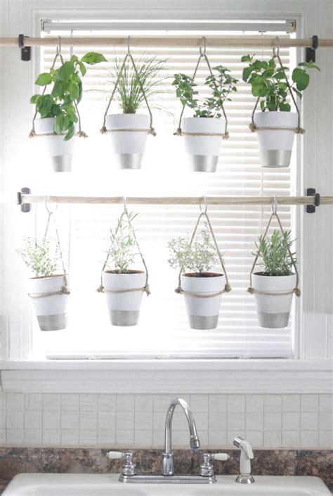 indoor hanging garden ideas best 25 indoor gardening ideas on inside