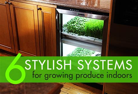 indoor hydroponic vegetable garden 6 stylish systems to keep your organic vegetable garden