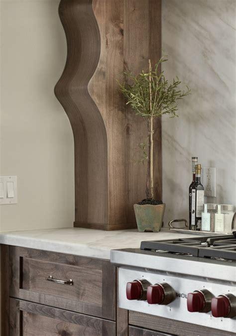 kitchen cabinet interiors interior design ideas home bunch interior design ideas