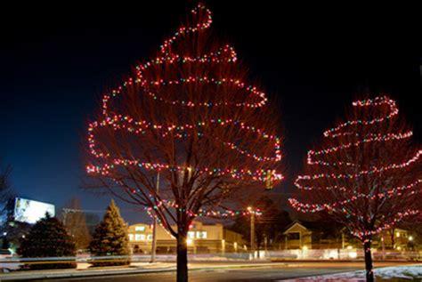 how to put lights on a tree outside tree lights outside happy holidays