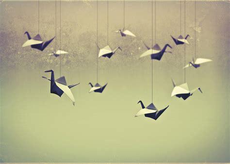 paper birds origami origami birds photograph by infectedpixel