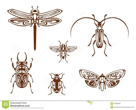 insects in tribal ornamental style stock vector image
