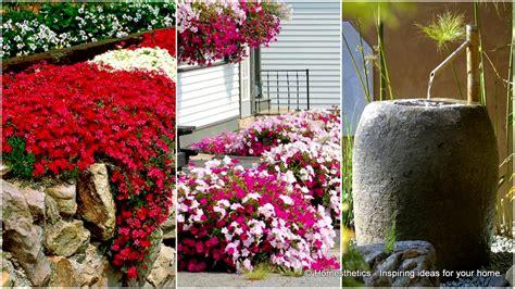garden flower ideas 10 small flower garden ideas to build a serene backyard