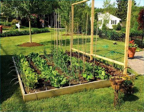 best vegetables for small garden best 20 vegetable garden design ideas for green living