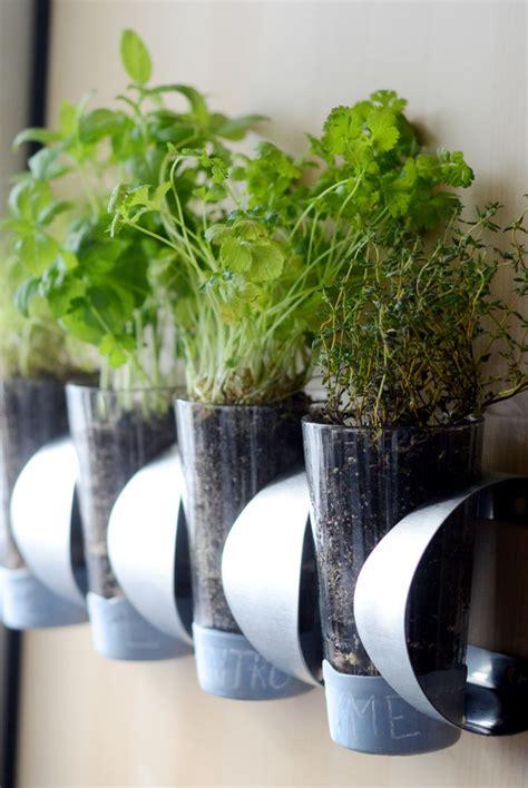 indoor herb planter 10 diy indoor herb garden ideas and planters honey lime