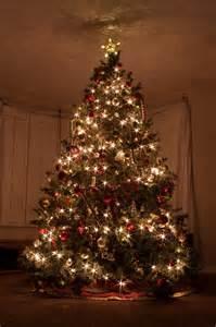 tree with big lights 무료 사진 크리스마스 트리 크리스마스 불빛 스타 상록수 항성 pixabay의 무료 이미지