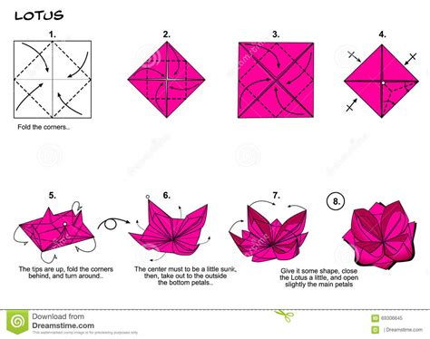 how to fold origami lotus origami lotus steps stock illustration image 69306645