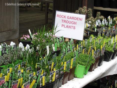 rock garden plants for sale rock garden plants for sale shoreline area news