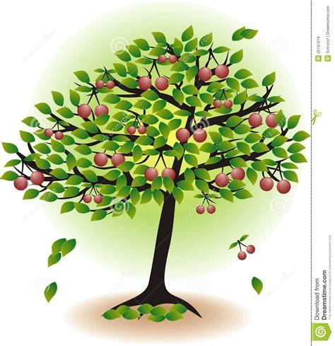 fruit cherry tree stock vector illustration of nature 25181019