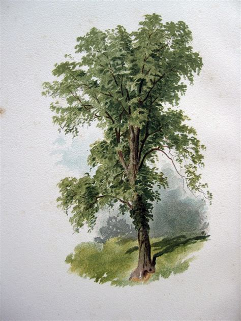 painting trees books