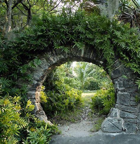 Garden Arch Vines 17 Best Ideas About Garden Arches On Garden