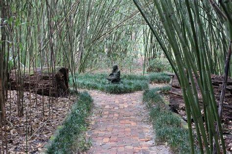 Botanical Gardens Gainesville by Kanapaha Botanical Gardens Picture Of Kanapaha Botanical