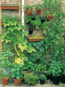 home vegetable garden tips goodshomedesign