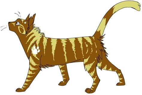 warrior cat warrior cats image service images leafstar wallpaper and