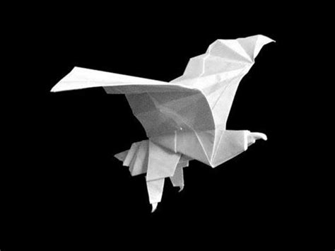 easy origami eagle 20 best ideas about origami eagle on origami