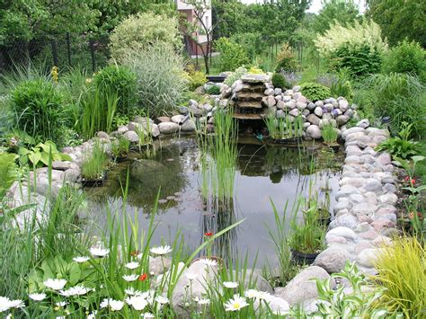 building backyard pond how to build a pond a beginners guide to building the