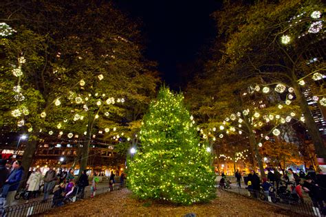 lighting in trees a guide to tree lighting celebrations in philadelphia for