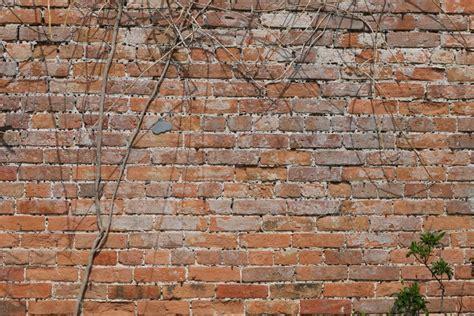 garden wall bond brickwork 29 best brickwork details images on brickwork