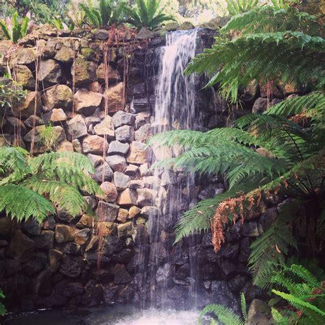 royal botanic gardens melbourne royal botanic gardens melbourne melbourne australia