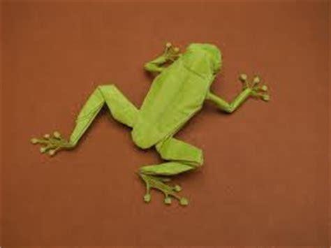 origami tree frog origami maniacs origami tree frog robert j lang