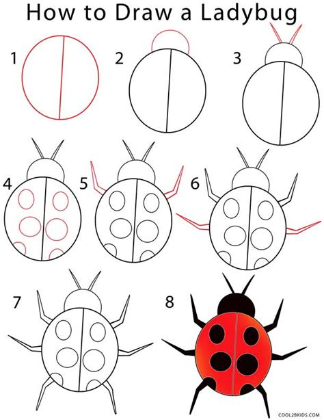 how to draw step by step how to draw a ladybug step by step pictures cool2bkids