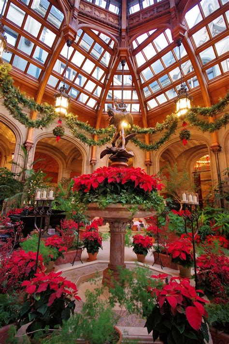 biltmore estate decorations best 25 biltmore estate ideas on