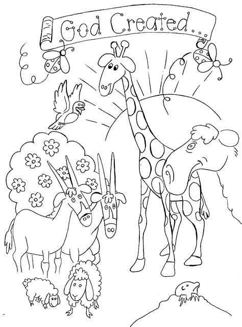 creation coloring pages on pinterest creation bible