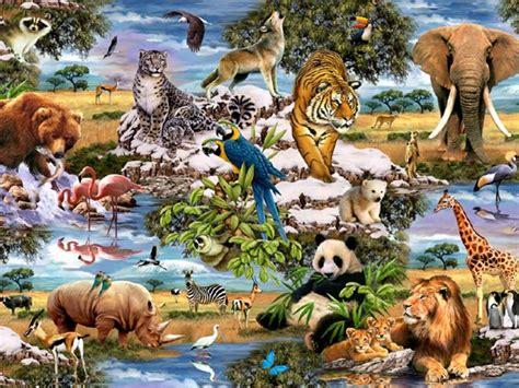animal jungle jungle animals five wallpapers jungle animals five stock
