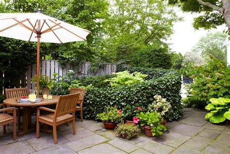 patio ideas for small gardens 5 ideas para plantear y decorar jardines peque 241 os