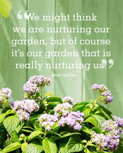 quotes on gardens and flowers best 25 garden quotes ideas on gardening