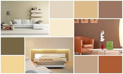 interior color for home designer color palettes for a home homesfeed