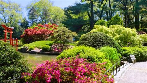 botanical garden nyc top 10 secrets of the botanic garden in nyc