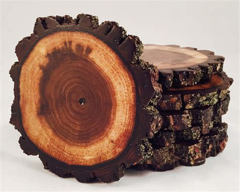 tree shop return policy 19 tree shop return policy