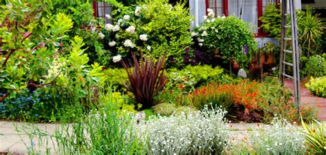 bay area landscape sf bay area landscape contractors