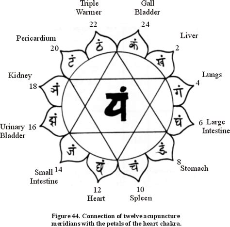 shalagram knowledge the mystic cosmos appendix i