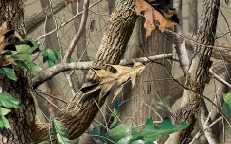 real tree for realtree camouflage backgrounds images