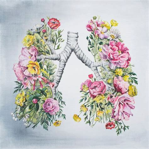 spray painter lungs the 25 best ideas about cystic fibrosis on