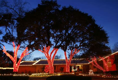 tree wrapped in lights wrapped tree lights dallas landscape lighting
