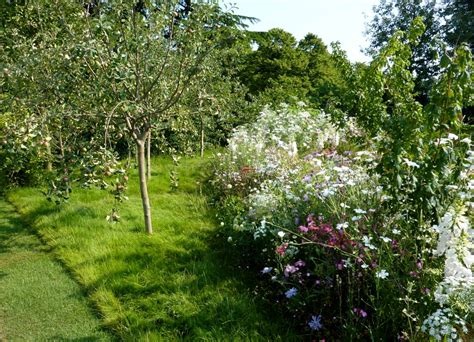 bushes and trees cottage garden trees