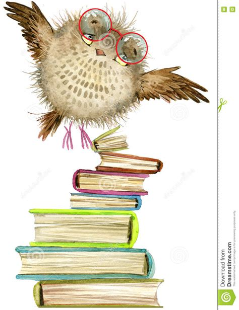 owl picture books owl owl watercolor forest bird school illustration