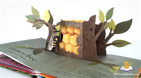 pictures of pop up books welcome to the neighborwood pop up book best pop up books