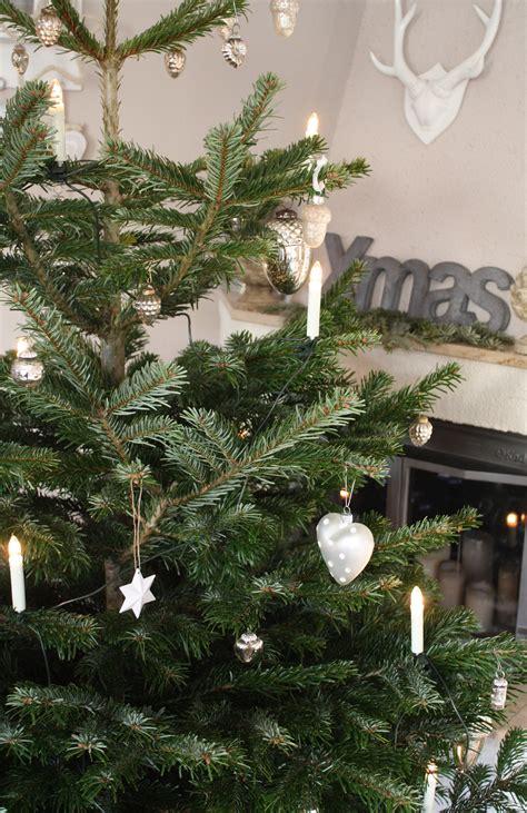 ratgeber weihnachtsbaum kaufen pflegen entsorgen ich