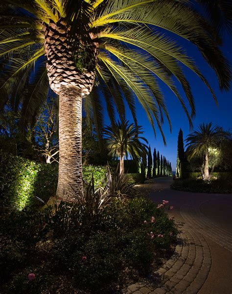 focus led landscape lighting tropical focus