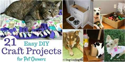pet craft projects 21 easy diy craft projects for pet owners miss molly says
