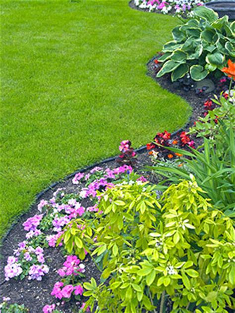 all about landscaping mechanicsville landscaping landscaping specialists in