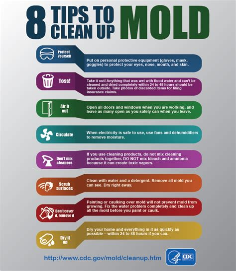 tips for cleaning tips on cleaning mold after a flood blogs cdc