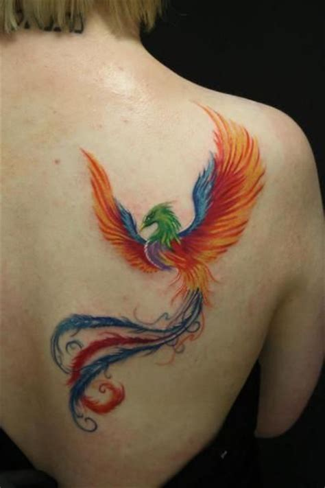 ave fenix de color tatoo pinterest pictures design