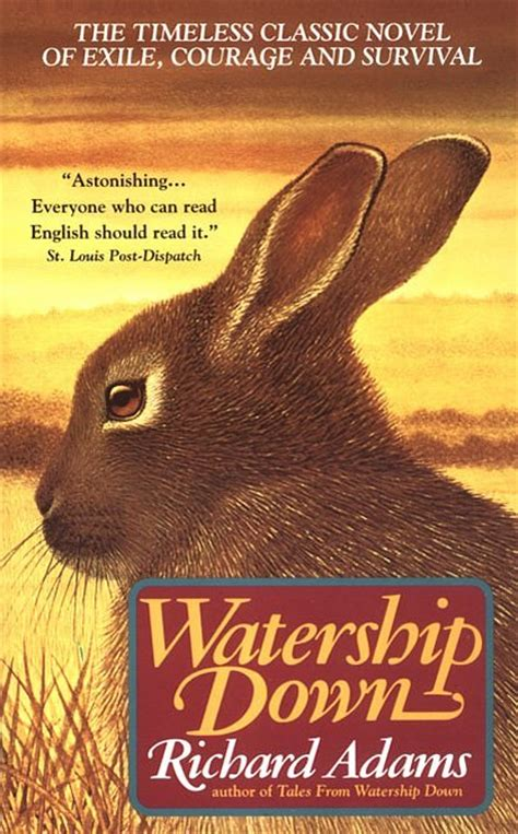 the watership picture book my has joined the thousand watership amanda