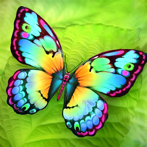 a butterfly paint me a butterfly mobile app the best mobile app awards